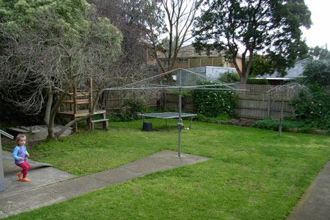 20090811-backyard
