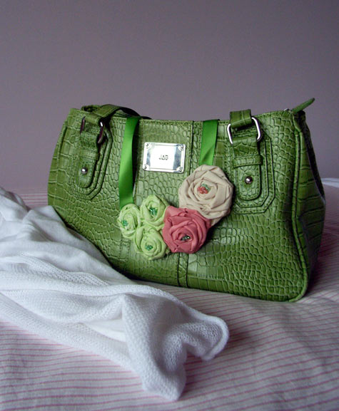 20100227-Applegreenhandbag