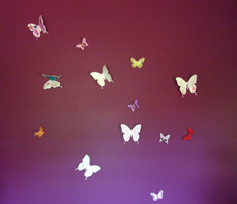 Purple Orchid coloured Wall