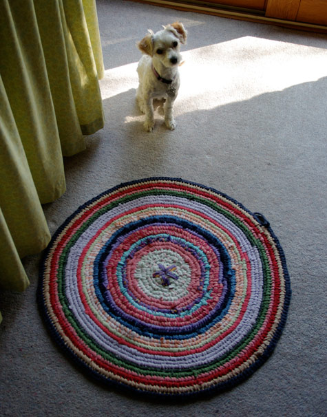Toothbrush Rug WIP, with Lotta the Moodle looking on