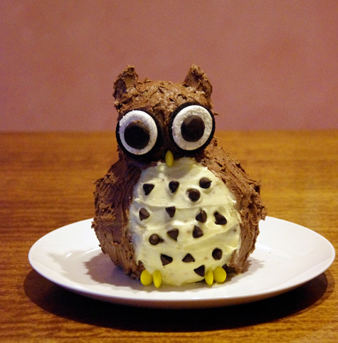 Rory's Owl Cake for his 10th birthday