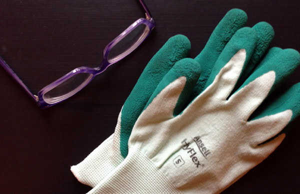 Glasses and Hyflex Gloves